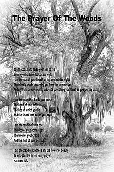 The Prayer Of The Woods 4 bw by Steve Harrington