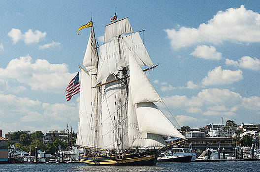The Pride of Baltimore II in Baltimore Harbor by Lauren Brice