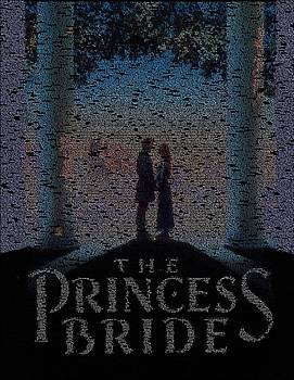 The Princess Bride Script Mosaic by Paul Van Scott
