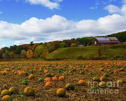 The Pumpkin Farm by Alice Mainville