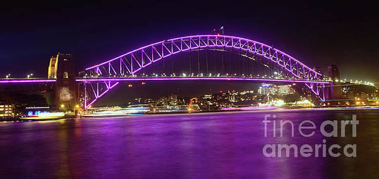 The Purple Coathanger by Kaye Menner by Kaye Menner