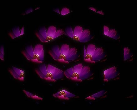 The Purple Flower by Linda Ouellette