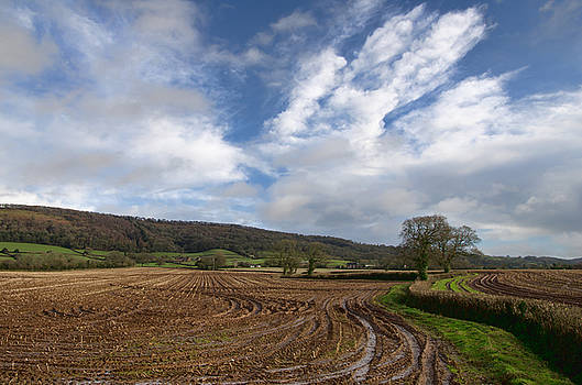 The Quantocks in Somerset by Pete Hemington