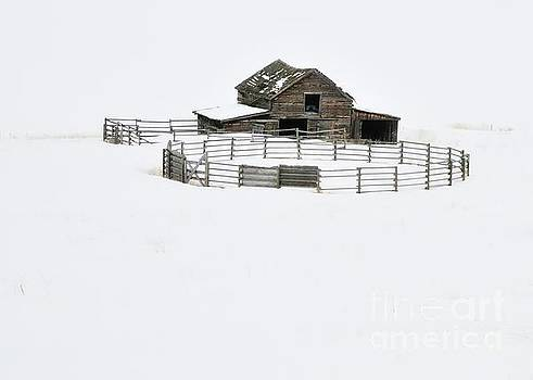 The ranch by Robert Nowland
