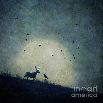 The raven and the stag by Priska Wettstein
