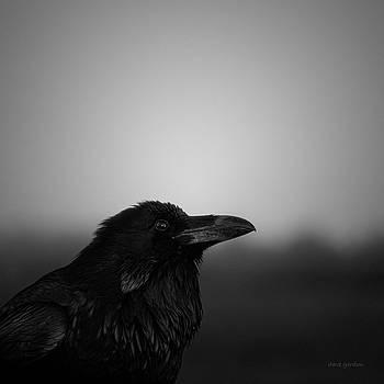 David Gordon - The Raven BW