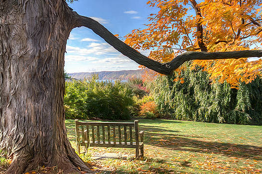 The Reading Bench by Zev Steinhardt