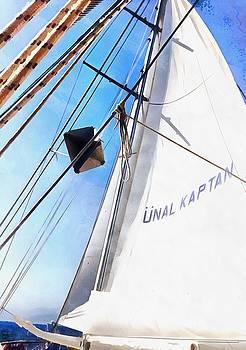 Tracey Harrington-Simpson - The Realist Adjusts The Sails