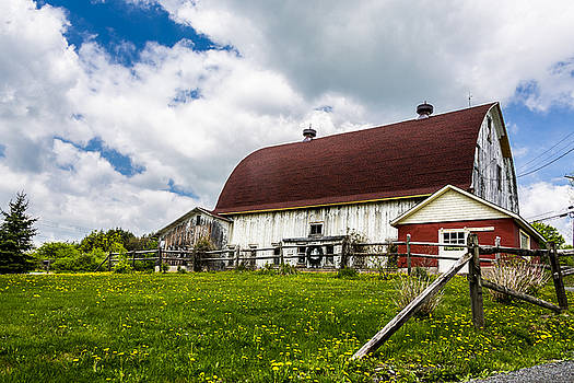 The Red and White Barn by Paula Porterfield-Izzo