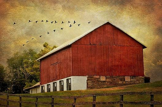The Red Barn by Fran J Scott