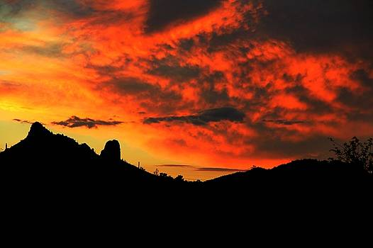 The Red Desert Sky  by Kimmi Craig