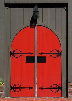 The Red Door by Alynne Landers