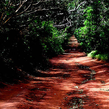 James Temple - The Red Road To Ironwood Hills