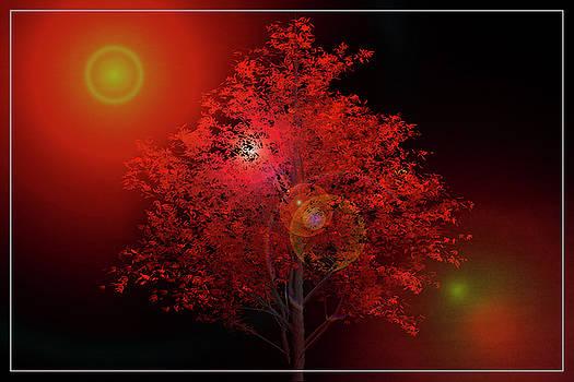 Debra and Dave Vanderlaan - The Red Tree