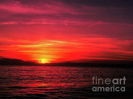 The Reddened Sunset by Fei A