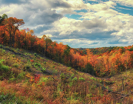 The Ridges of Southern Ohio in Fall by Richard Kopchock