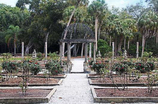 The Ringling Rose Garden by Michiale Schneider