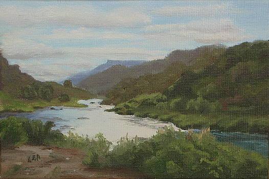 Lea Novak - The Rio Grande Between Taos and Santa Fe