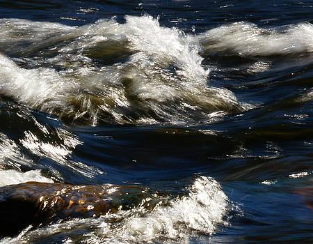 Linda Shafer - The River Rush