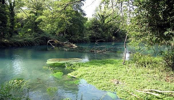 The river Timava by Kneki Krtukaj