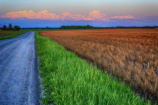 The Road Home by Allen Ahner