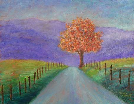 The Road Home by Terri Cowart