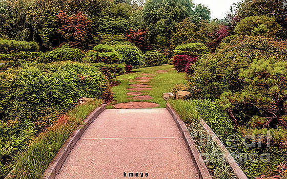 The Road by Kanisha Moye