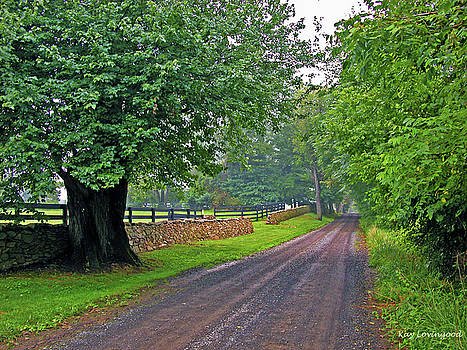 Kay Lovingood - The Road Less Traveled