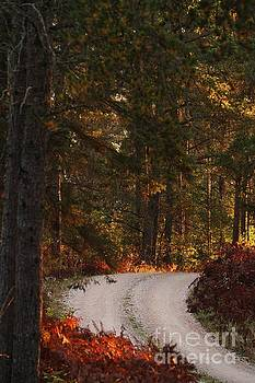 The Road Less Traveled by Teresa McGill