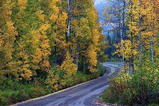 John De Bord - The Road Of Beauty