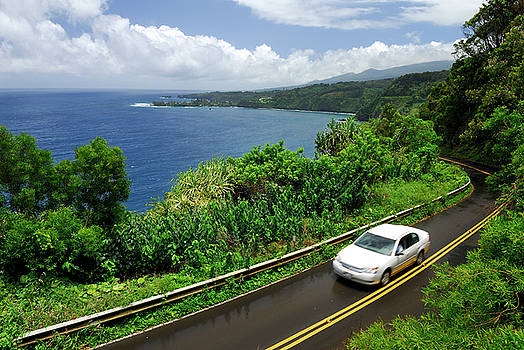 Reimar Gaertner - The road to Hana in Maui at Kaumahina State Wayside Park