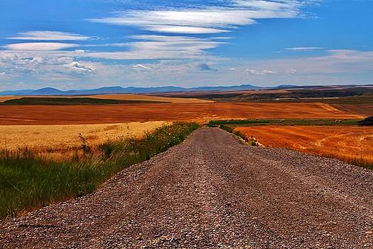 The Road To Nowhere by William Rockwell