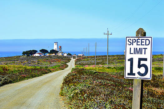 Glenn McCarthy Art and Photography - The Road To Piedras Blancas Lighthouse