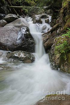 Rod Wiens - the Rock Falls