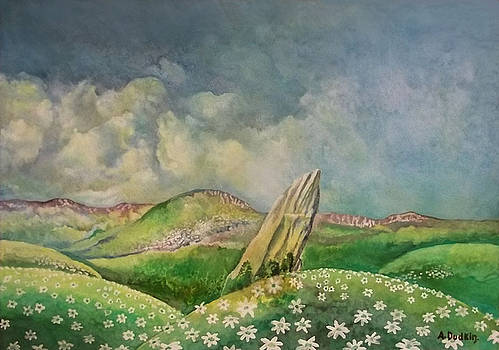 The rock in the fields by Alexander Dudchin