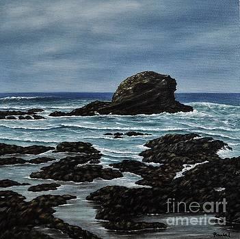 The Rock  by Paula Ludovino