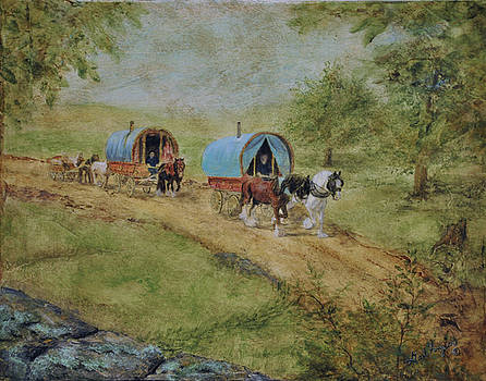 The Romani Travelers by Gail Finger