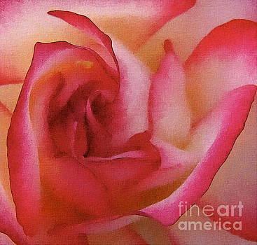 The Rose by Andrea Kollo