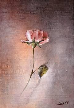 The Rose by Ewa Gawlik
