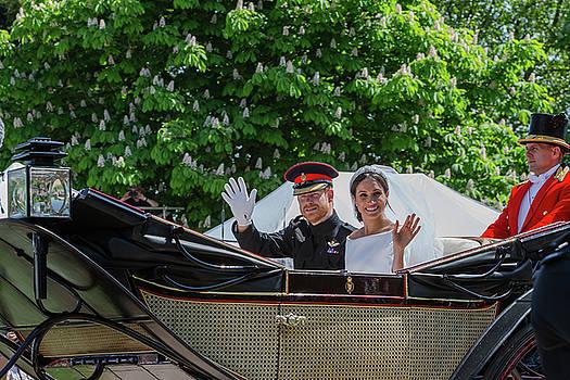 The Royal Wedding Harry Meghan by Andy Myatt