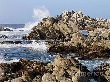 The Rugged Shore of Pacific Grove by James B Toy