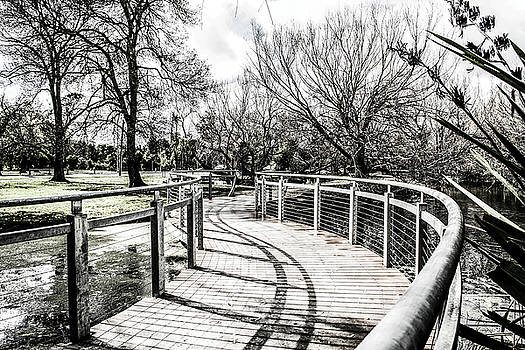 The S Bridge  by Naomi Burgess