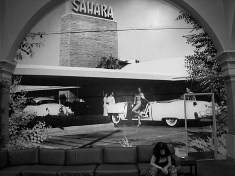 The Sahara by Danielle Bedard