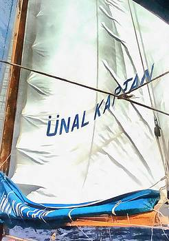Tracey Harrington-Simpson - The Sails Of Unal Kaptan