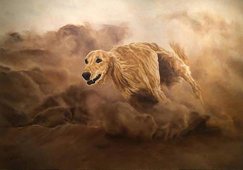 the Saluki by Erna Goudbeek
