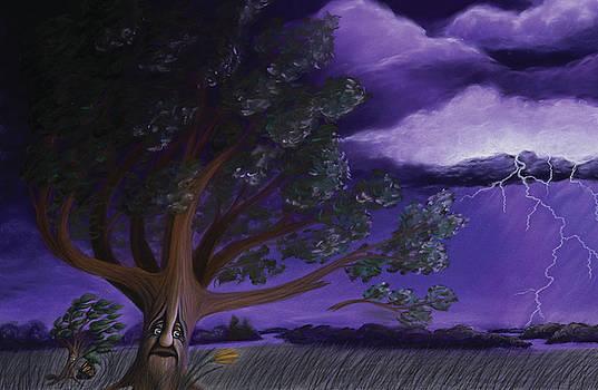 The Sapling - Stormy Night by Emily MacDonald