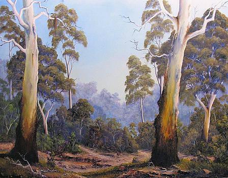 The Scent Of Australian Gumtrees by John Cocoris