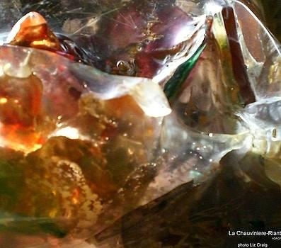 The Sea of Ice by La Chauviniere Riant