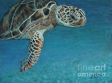 The Giant Sea Turtle by Bob Williams