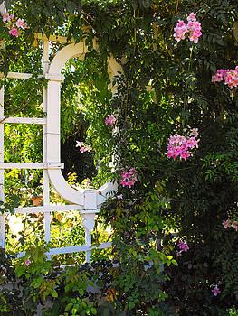 Jayne Wilson - The Secret Garden